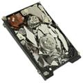 hard disk crash