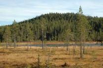 ladda ned (1)länsstyrelsen.se Orsa Finnmark