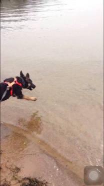 FM Kerro på väg att hoppa i sjön