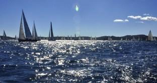 sailing-1123260_1920
