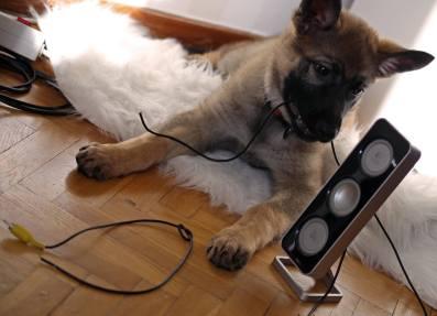 FM Labina Matte jag gillar inte din musiksmak så jag löste det problemet.