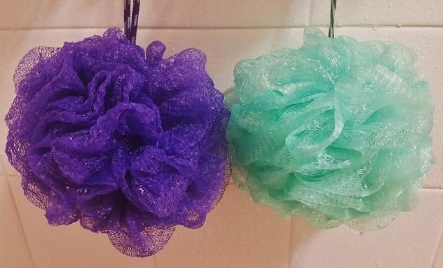 shower-sponge-1216556_1920