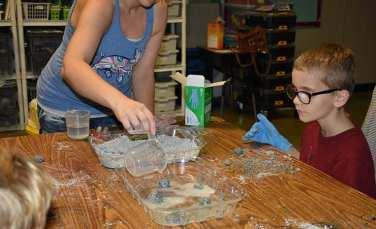 """Moon rocks"" dissolve when vinegar is poured on them."
