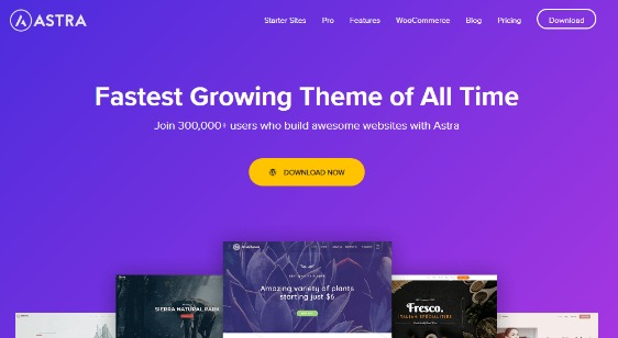 astra business themes
