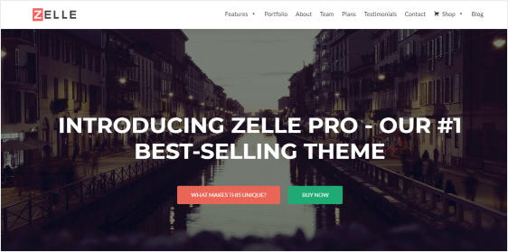 zelle pro wordpress theme