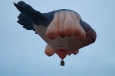 Skywhale, from below