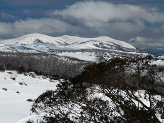 View back to Falls Creek