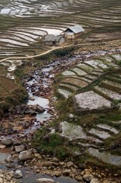 Sapa rice paddies vertical