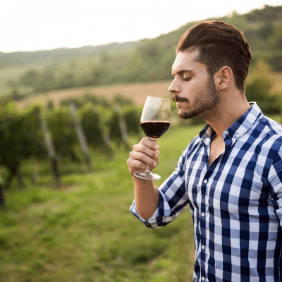 Enjoy Some Wine With Your Travel Marketing