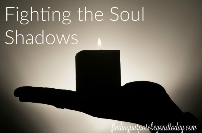Fighting the Soul Shadows