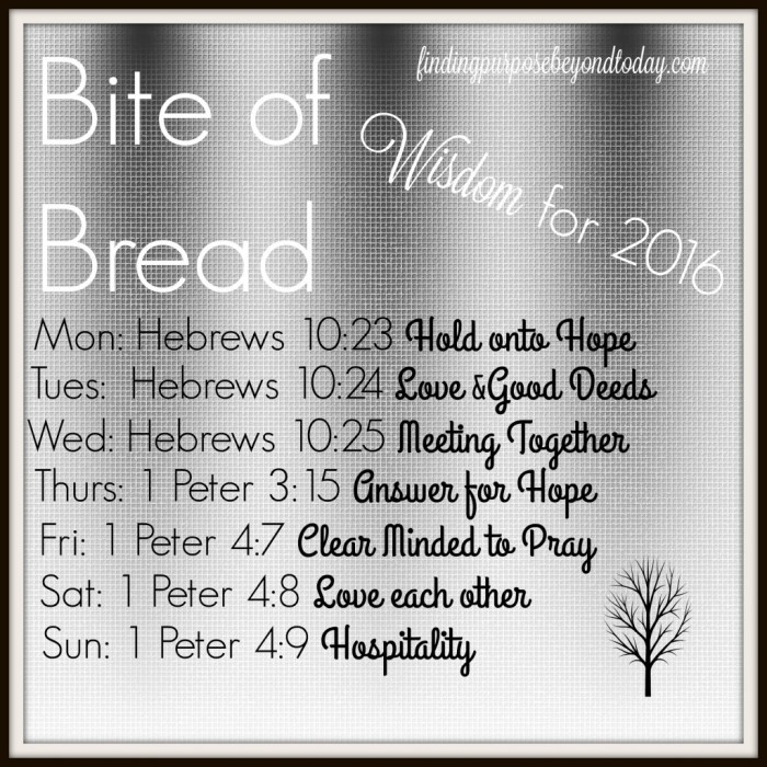 Bite of Bread Wisdom
