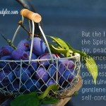How We Get the Fruits of the Spirit