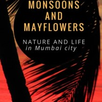Monsoons and Mayflowers