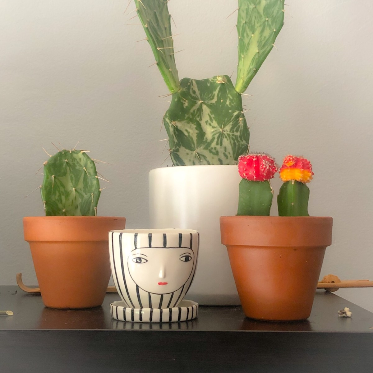 Kinska x Anthropologie Planter Pot