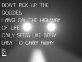 Highway Goddies