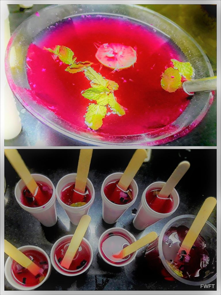 Jamun Popsicles/ Black Plum Ice Lollies