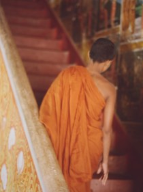 sri lanka, novice monk, temple, buddhism