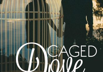 Caged Dove by Andrea Rodgers