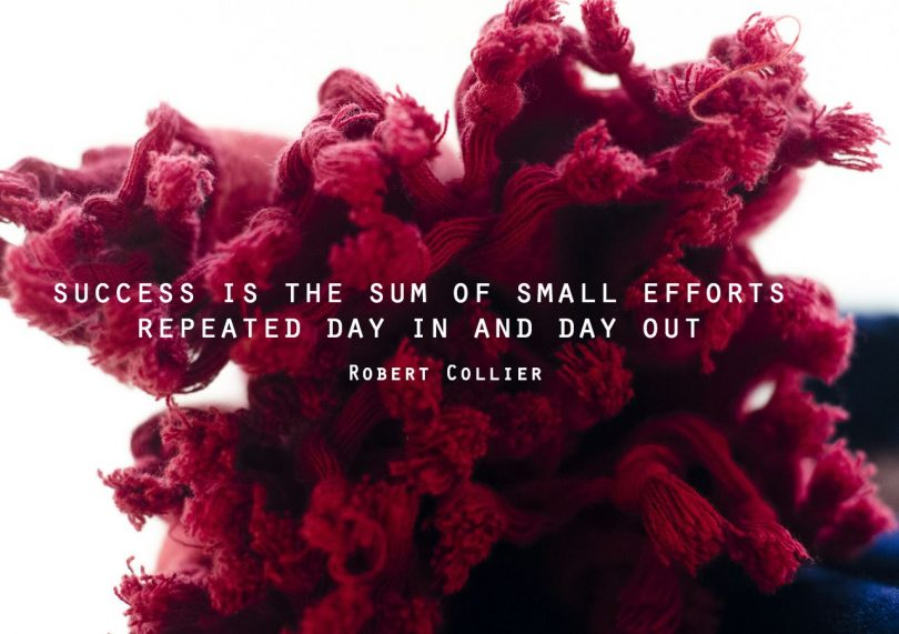 Success is the sum of small efforts repeated day in and day out. - Robert Collier