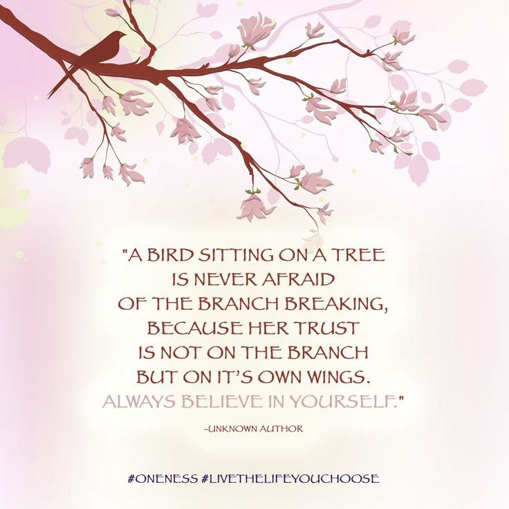 A bird sitting in a tree is never afraid of the branch breaking, because her trust is not on the branch but on it's own wings. Always believe in yourself.