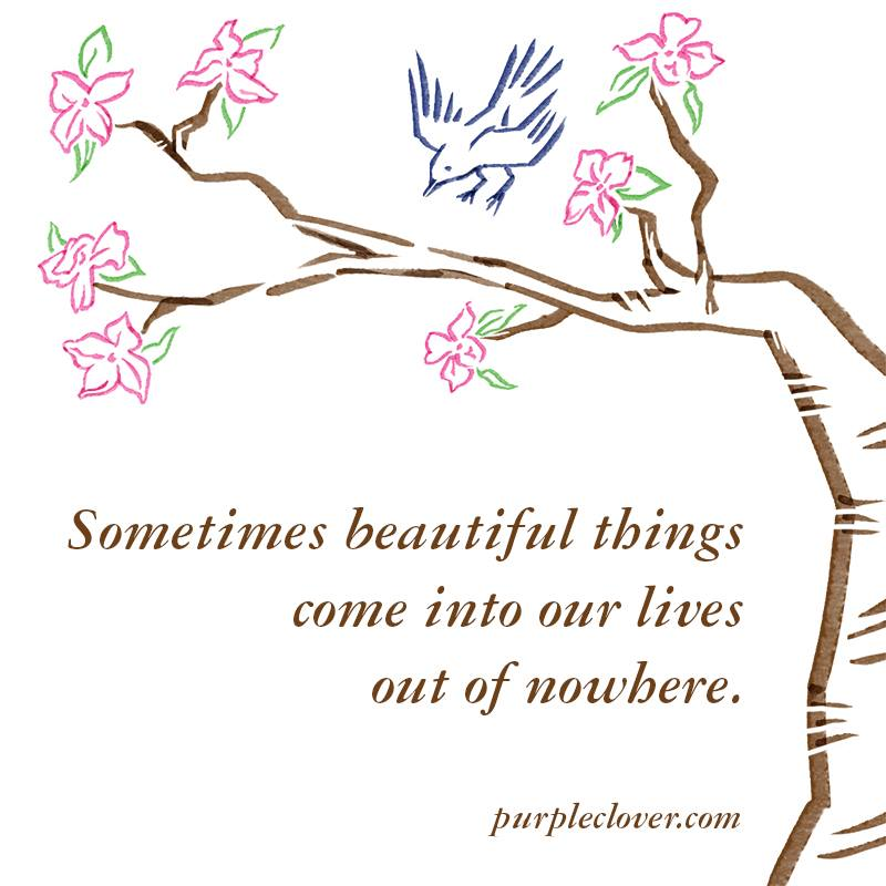 Sometimes beautiful things come into our lives out of nowhere.