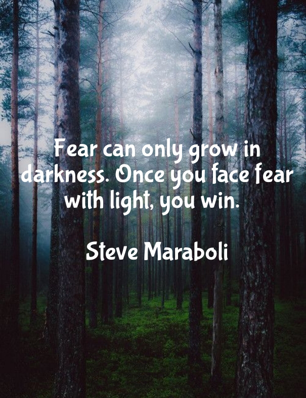 Fear can only grow in darkness. Once you face fear with light, you win. - Steve Maraboli