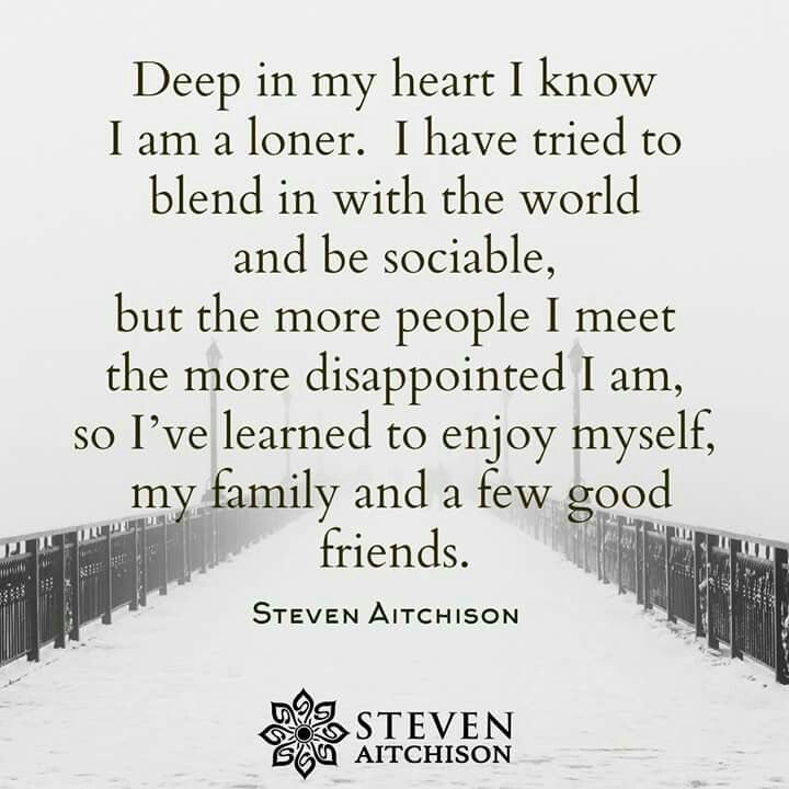 Deep in my heart I know I am a loner. I have tried to blend in with the world and be sociable, but the more people I meet the more disappointed I am, so I've learned to enjoy myself, my family and a few good friends. - Steven Aitchison