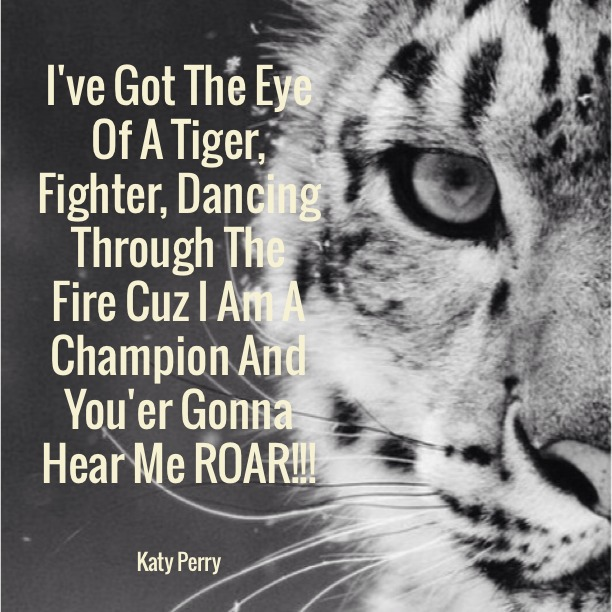 I've got the eye of the tiger, fighter, dancing through the fire 'cause I am a champion and you're gonna hear me ROAR!!! Katy Perry - Roar