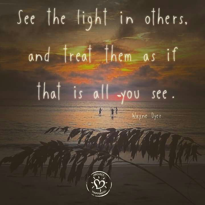 See the light in others, and treat them as if that is all you see. - Wayne Dyer