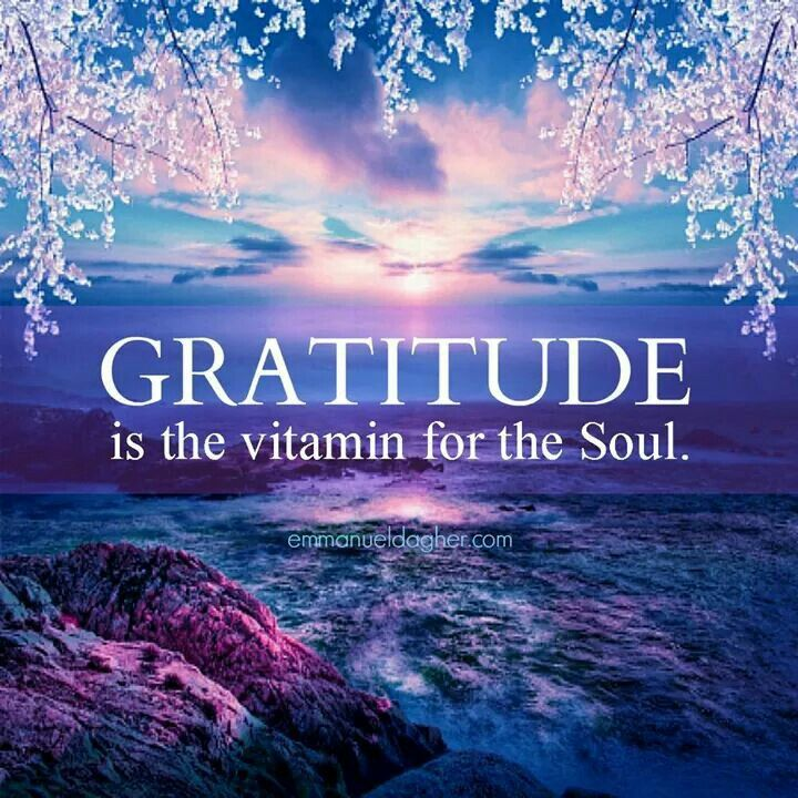 Gratitude is the vitamin for the soul.