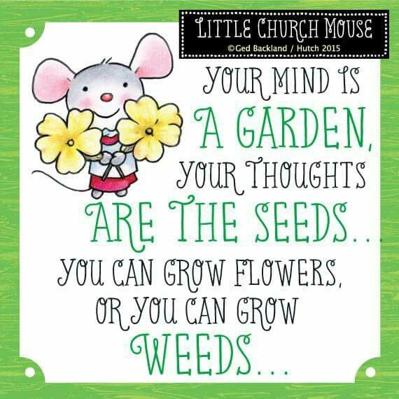 Your mind is a garden, your thoughts are the seeds... you can grow flowers or you can grow weeds.