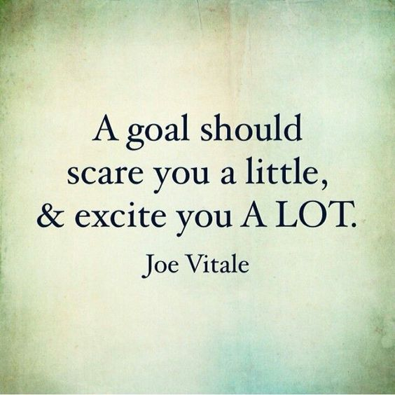 A goal should scare you a little, & excite you a lot. - Joe Vitale