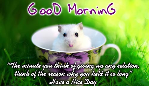 good-morning-quotes-the-minute-you-think-of