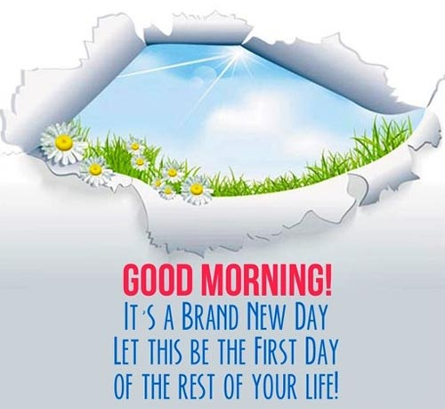 great-good-morning-quotes-its-a-brand-new-day