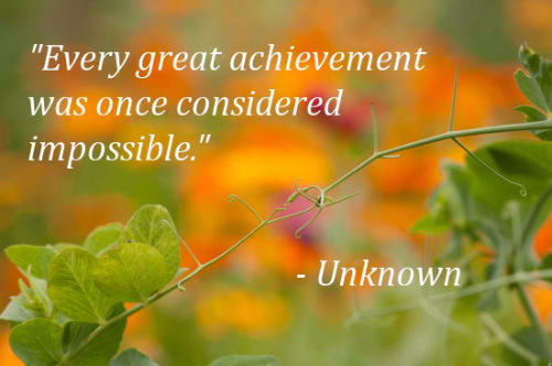 Cute Best Quotes of Encouragement