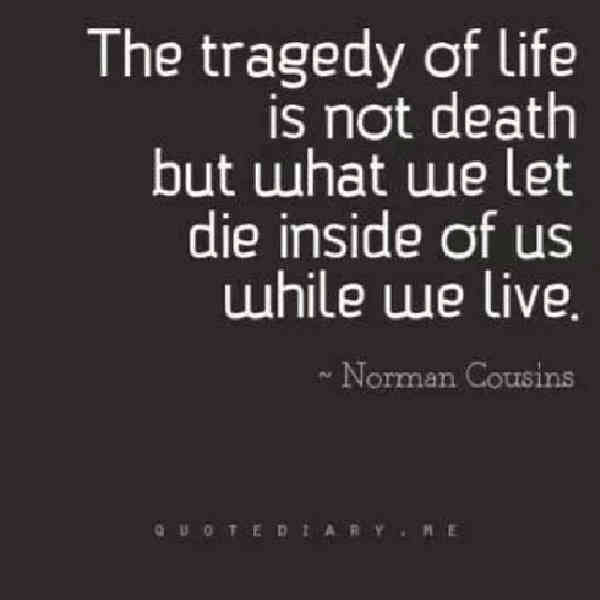 Quotes about family life and tragedy.