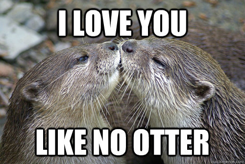 Love You Memes Funny : Very sweet and funny i love you this much memes sayingimages