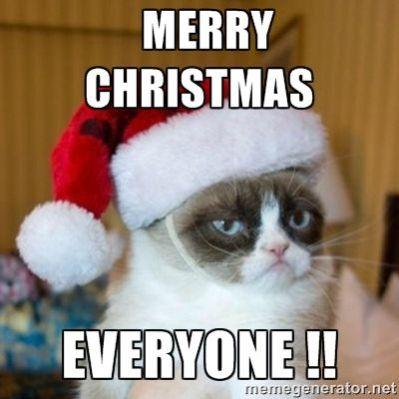 merry christmas everyone - Funny Merry Christmas Meme