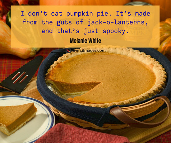 best funny thanksgiving pie quotes