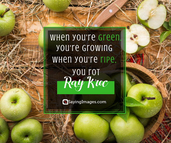 ray kroc growing quotes