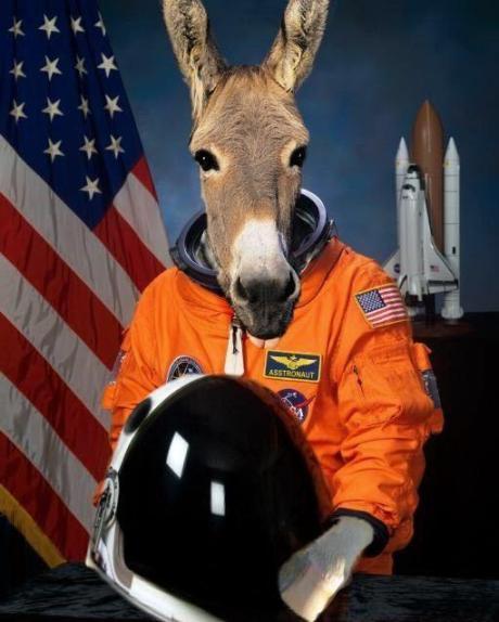 Burro de amplificação de conteúdo em um traje espacial