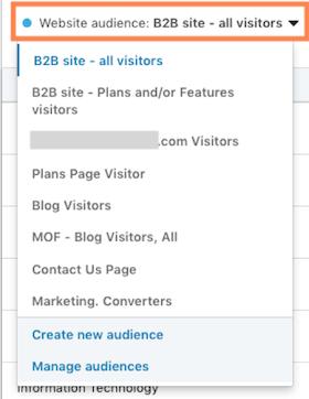 Website demographics linkedin audience filtering