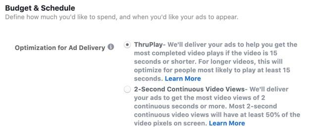 Facebook video views campaign options: budgets and scheduling
