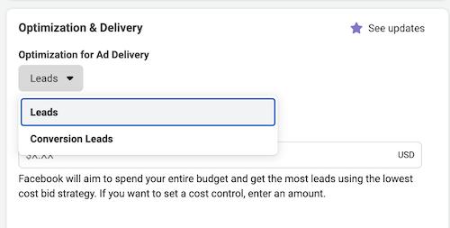 facebook messenger ad optimization and delivery setup