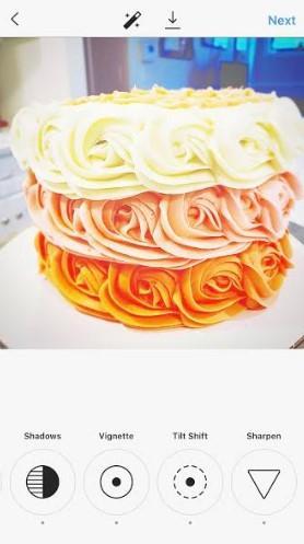 the same cake photo