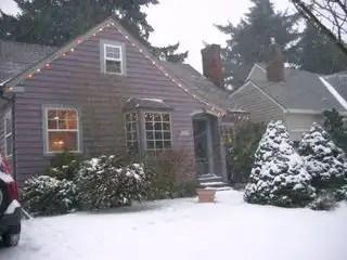 Snow 060