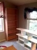 Emptybookcases2
