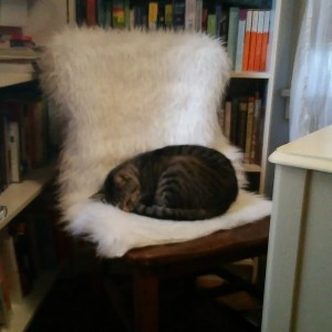 LT on chair