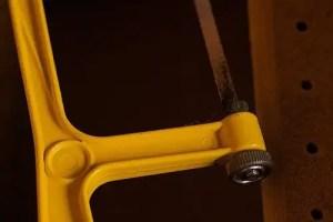 yellow-dailyshoot-8257834-l