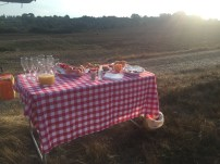 Breakfast Picnic!